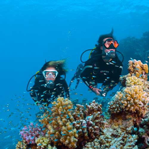 Diving Gili Air with Next Level Scuba