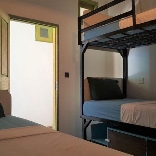 next-level-scuba-tipsea-turtle-room1